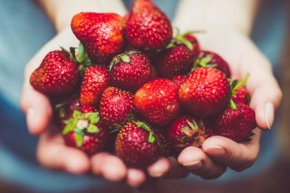 Jak chronić truskawki przed chorobami?