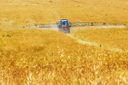 Nawozy z miedzią - Po co miedź w uprawie roślin?