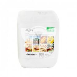 Algex 5L algi