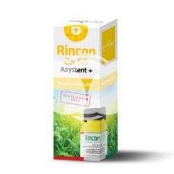 Rincon 25SG 60G rimsulfuron + Asystent 0,1L