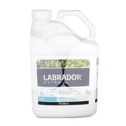 Labrador Extra 50 EC 10L