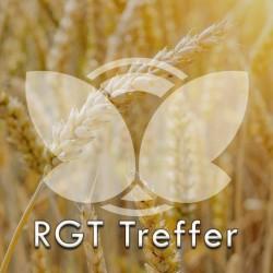 Pszenica ozima RGT Treffer, C1, opak. 50kg
