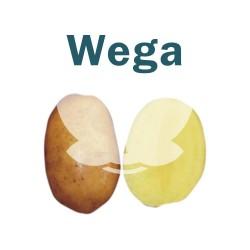"Ziemniaki sadzeniaki Wega - PL, klasa A, kal. 35-55mm, opak. a""25kg"