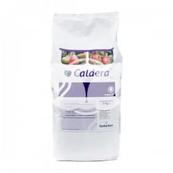caldera-700-wg-globachem-grzybobojczy-ditianon-5kg.jpg