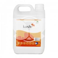 kaishi5l.jpg