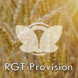 Pszenica ozima RGT Provision, C1, opak. 50kg